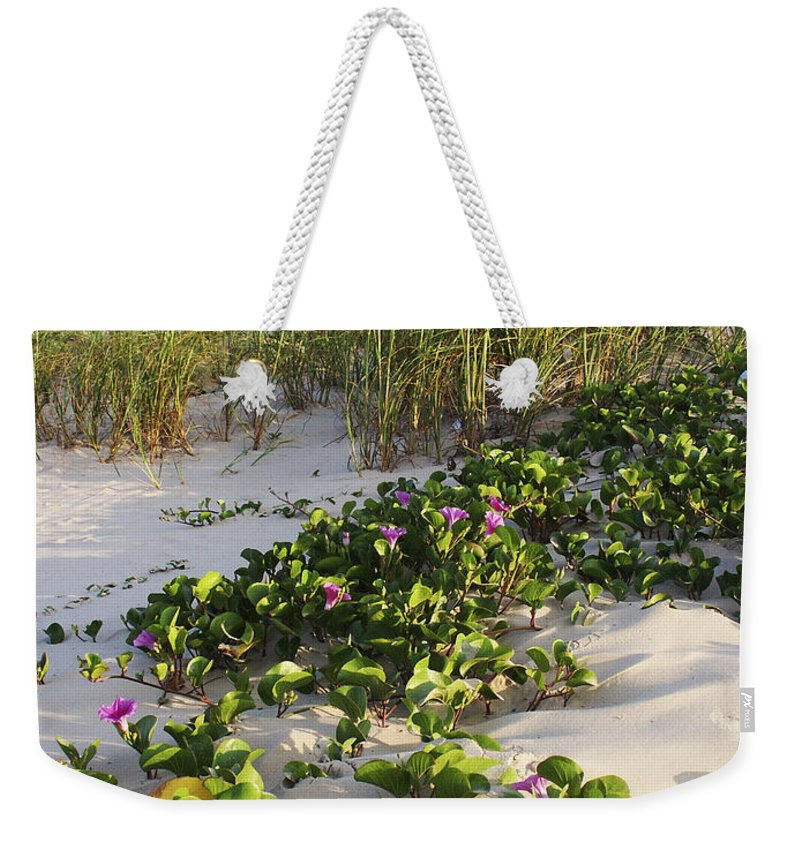 Nature Weekender Tote Bag featuring the photograph Climbing The Dunes by Marilyn Hunt