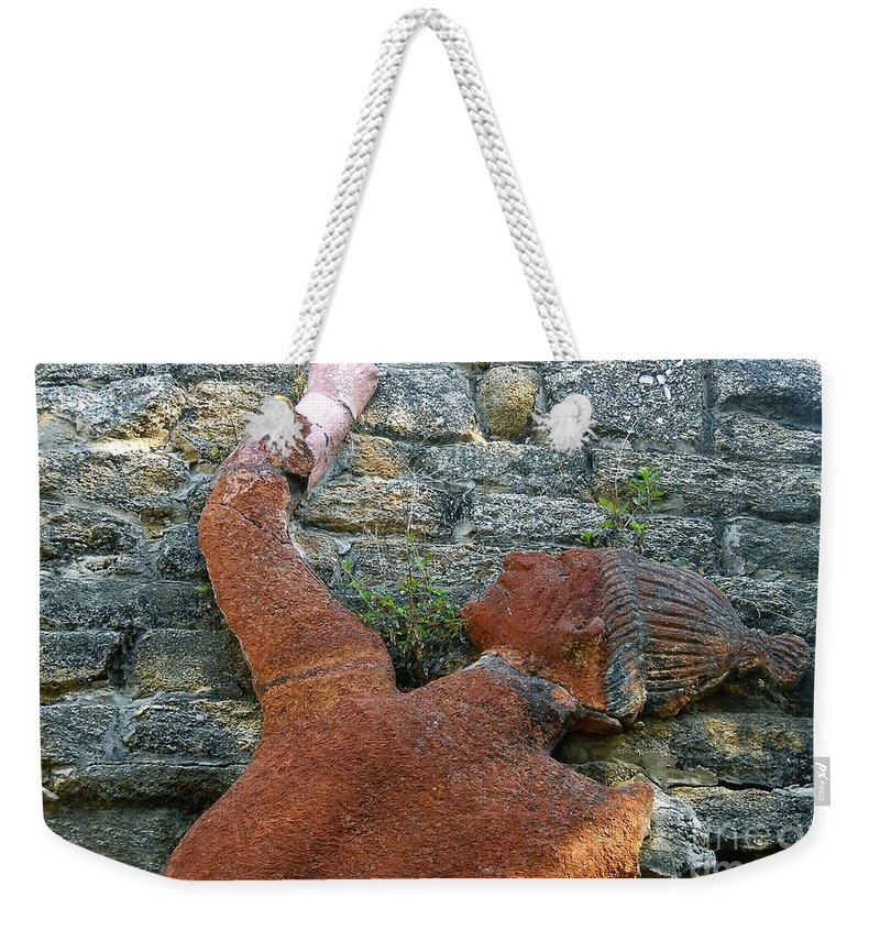 Tomoka State Park Weekender Tote Bag featuring the photograph Climbing To Tomoka by David Lee Thompson