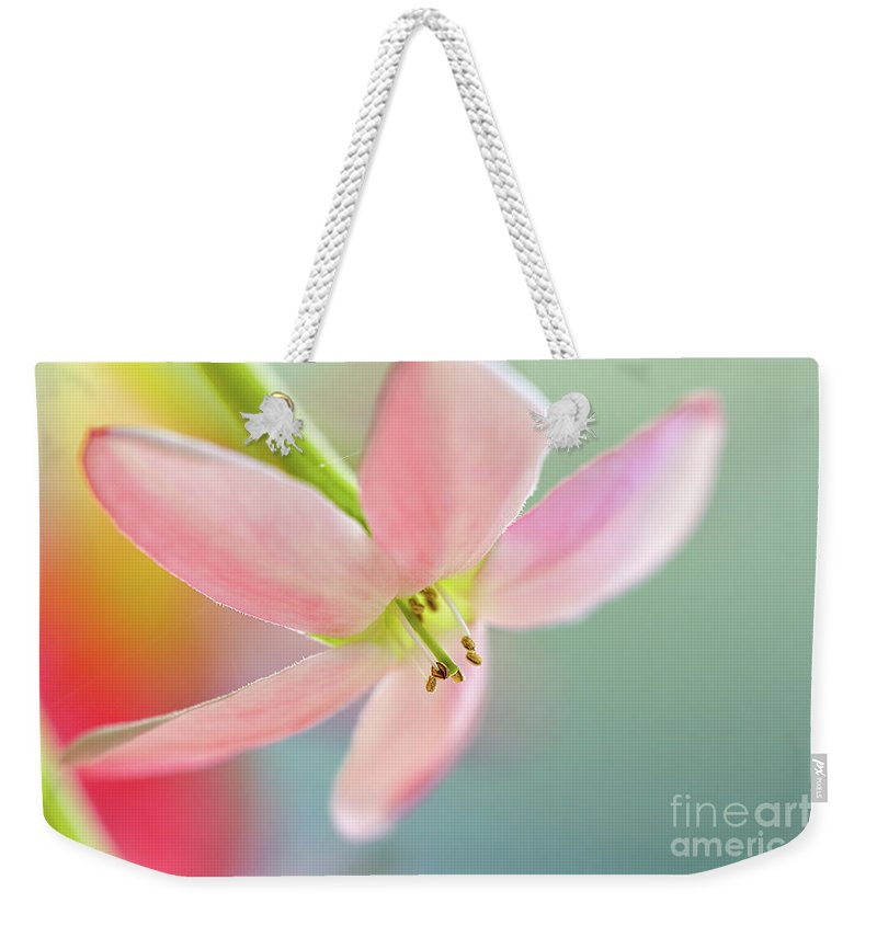 Pink Weekender Tote Bag featuring the photograph Close Up Of A Pink Flower by Ofer Zilberstein
