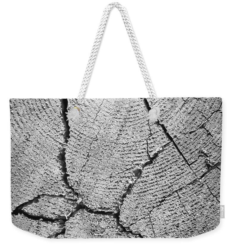 Photography Weekender Tote Bag featuring the photograph Close Up Of Tree Trunk by English School