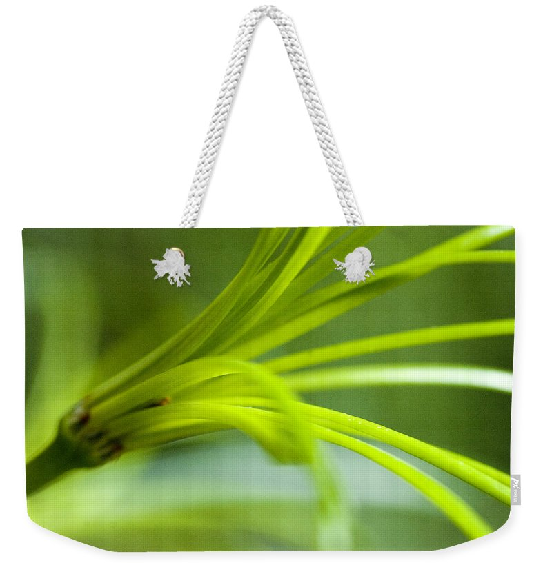 Flowers Weekender Tote Bag featuring the photograph Close View Of Green Flower by Todd Gipstein