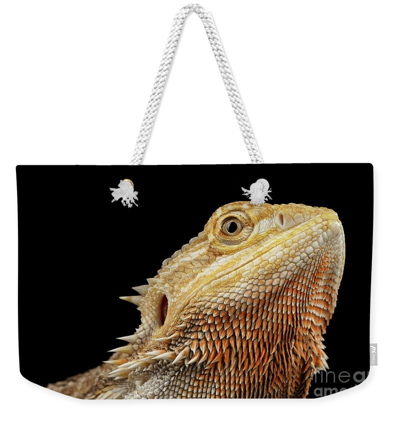 Dragon Close Up Weekender Bag