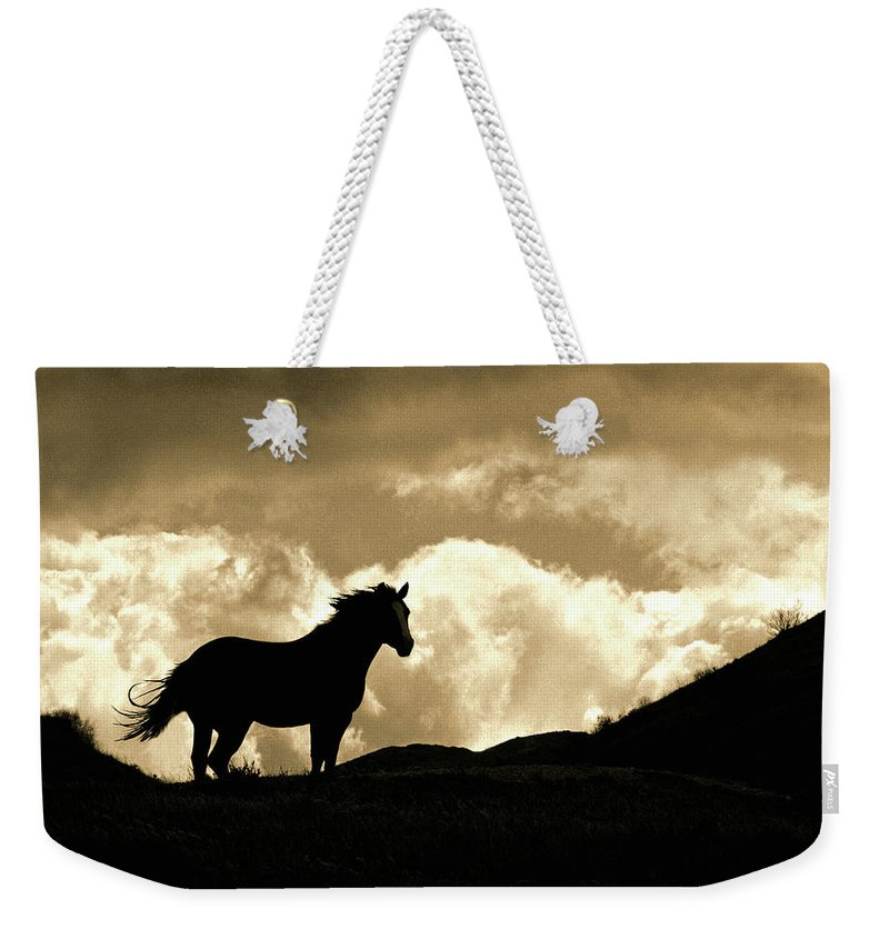 Cloud Weekender Tote Bag featuring the photograph Cloud by Don Schimmel
