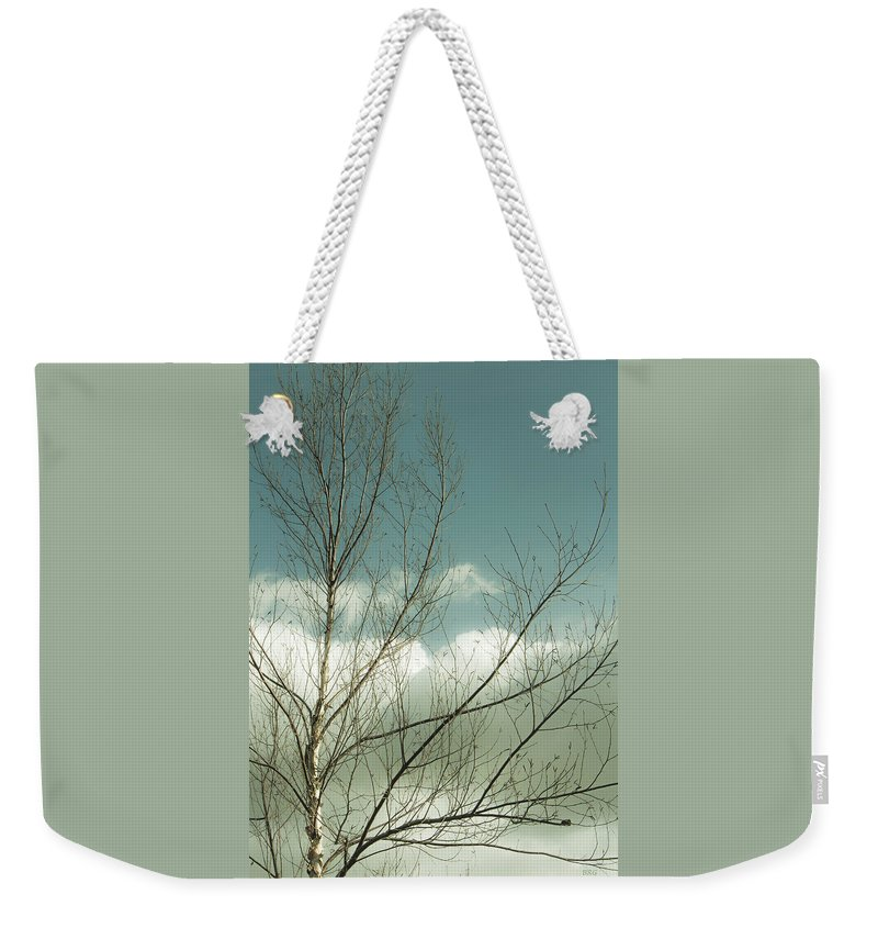 Tree Top Weekender Tote Bag featuring the photograph Cloudy Blue Sky Through Tree Top No 1 by Ben and Raisa Gertsberg