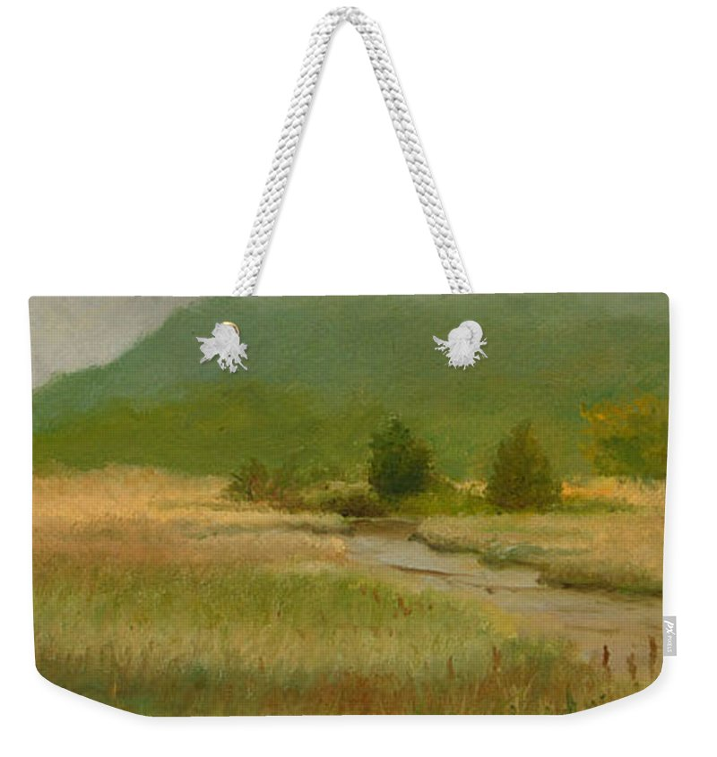 Oil Landscape Weekender Tote Bag featuring the painting Cloudy Day At Iona Marsh by Phyllis Tarlow