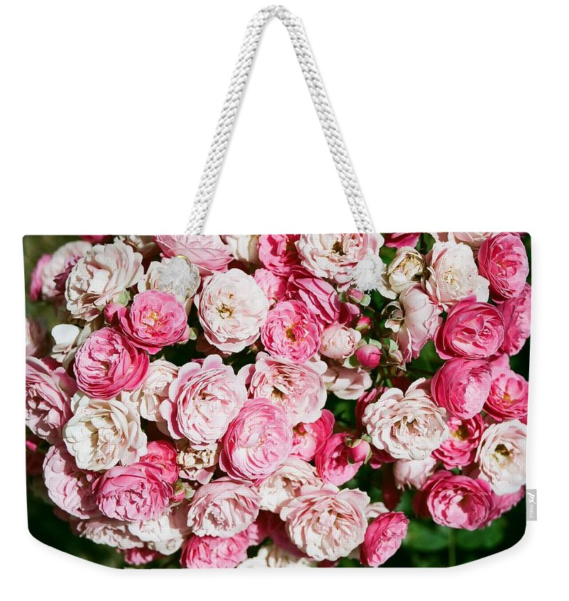 Rose Weekender Tote Bag featuring the photograph Cluster Of Roses by Dean Triolo