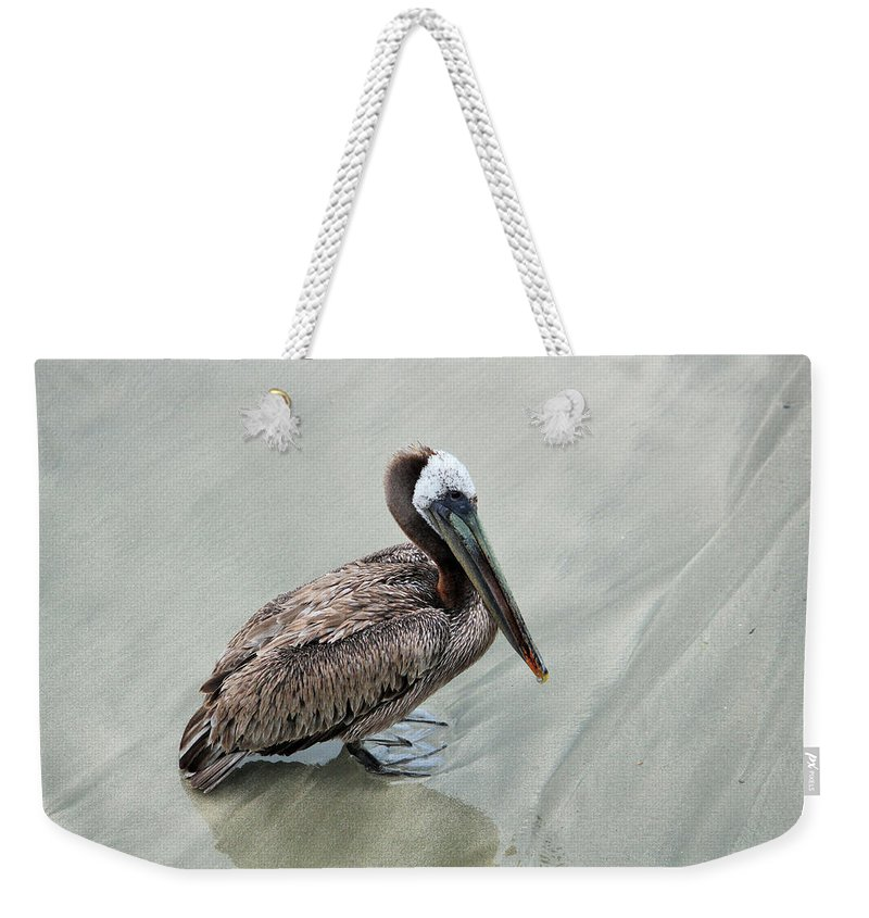 Pelican Weekender Tote Bag featuring the photograph Clyde by Marnie Patchett