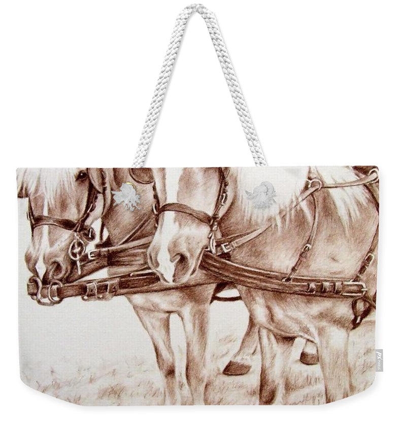 Horses Weekender Tote Bag featuring the drawing Coach Horses by Nicole Zeug
