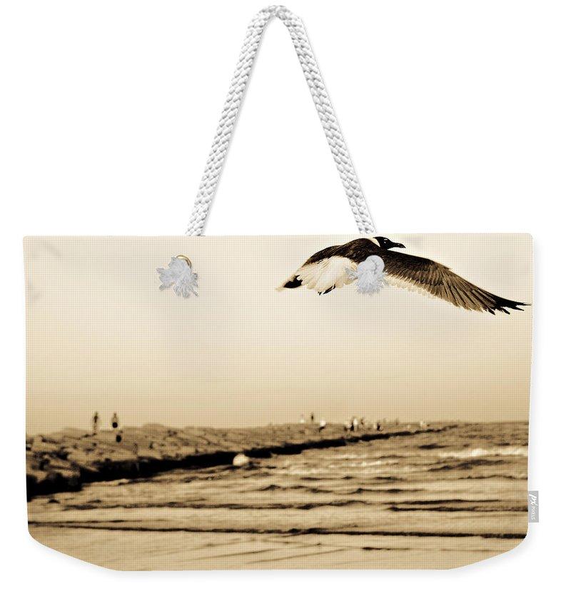Bird Weekender Tote Bag featuring the photograph Coastal Bird In Flight by Marilyn Hunt