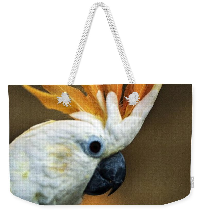 Animals Weekender Tote Bag featuring the photograph Cockatoo Show Off by Norman Andrus