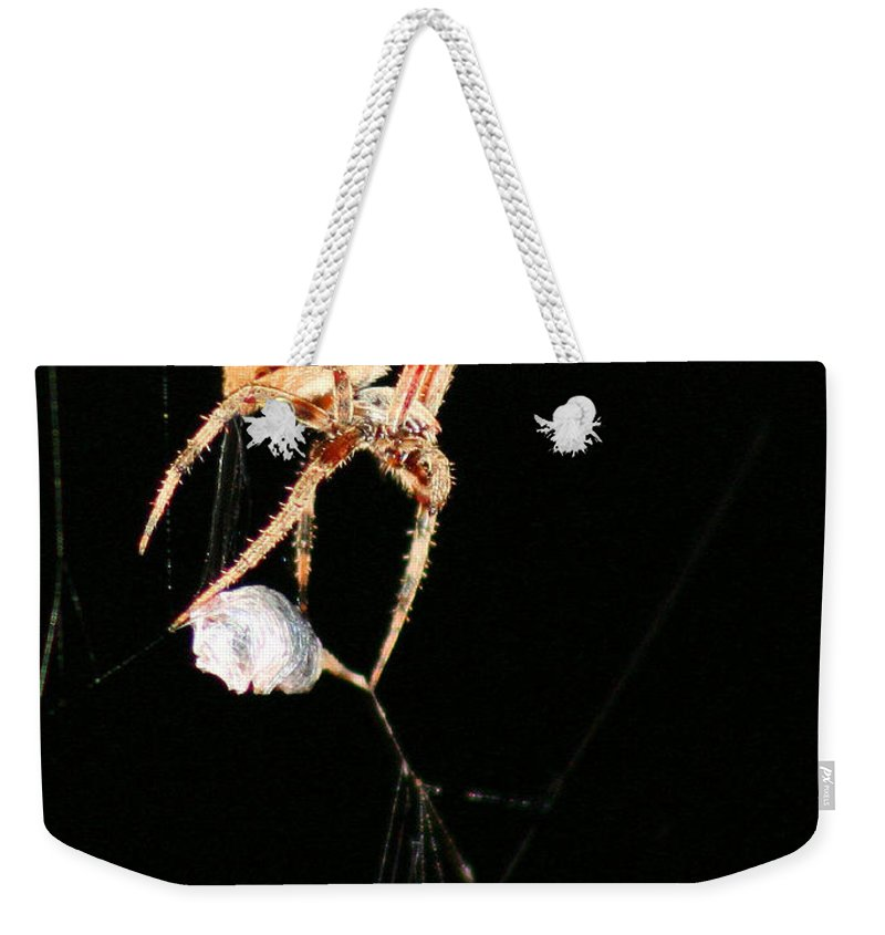 Spider Weekender Tote Bag featuring the photograph Cocooning The Victim by Kristin Elmquist