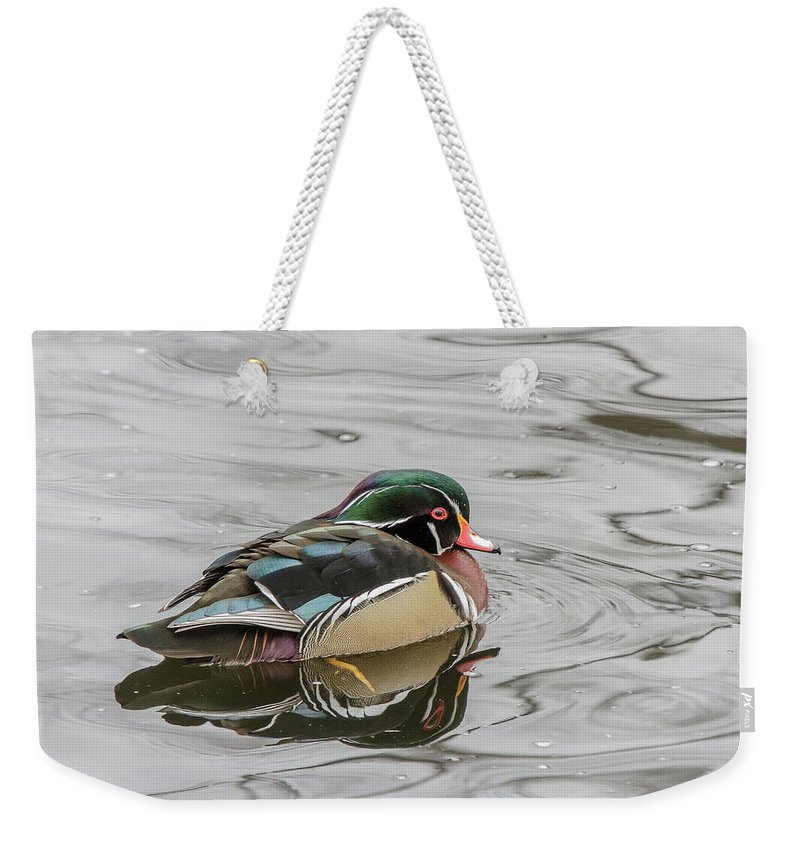 Wildlife Weekender Tote Bag featuring the photograph Cold by Barbara Blanchard