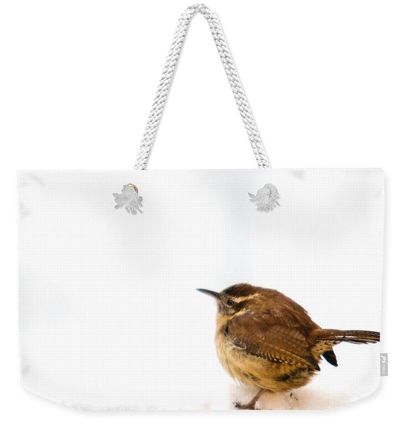 Cumberand Weekender Tote Bag featuring the photograph Cold Carolina Wren by Douglas Barnett