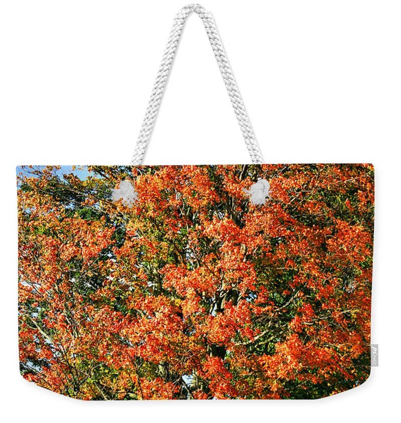 Fall Weekender Tote Bag featuring the photograph Color 2009 by Deborah Benoit