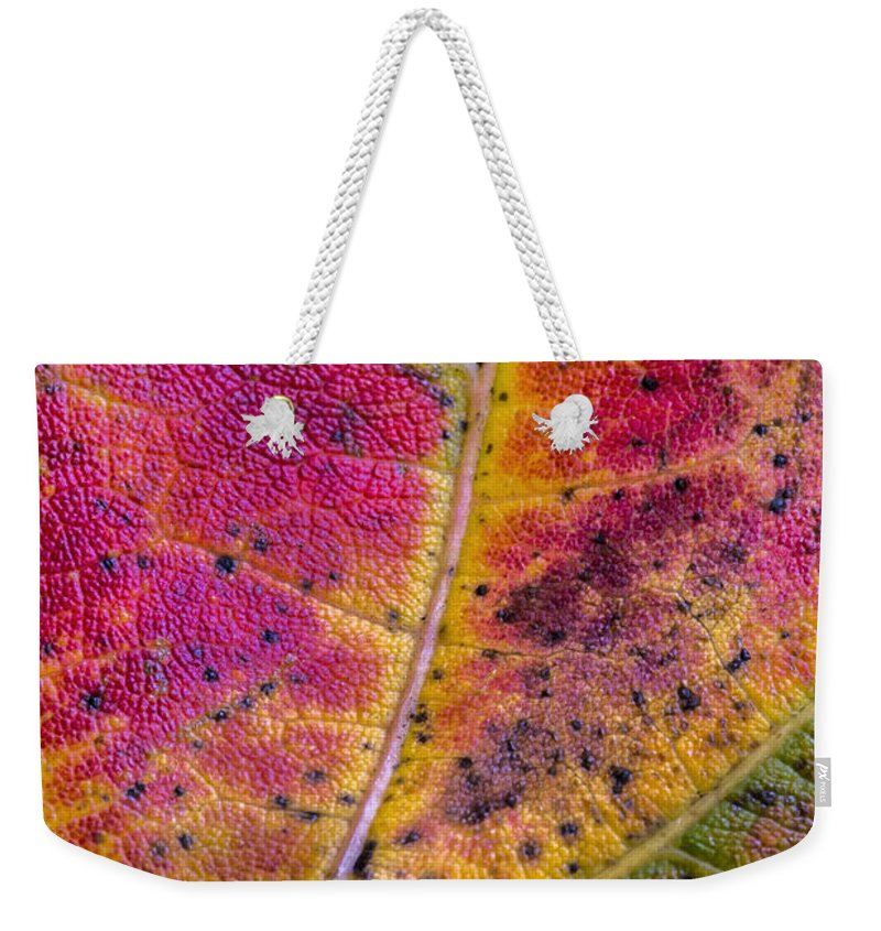 Texture Weekender Tote Bag featuring the photograph Color And Texture by Robert Storost