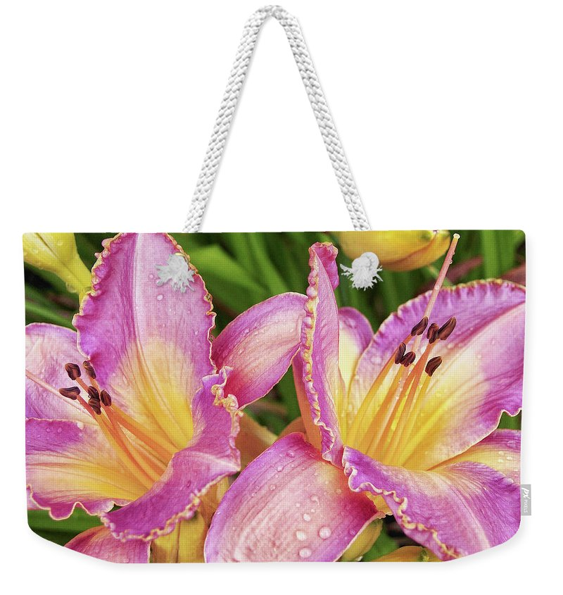 Fancy Lilies Weekender Tote Bag featuring the photograph Color My World by Kathi Mirto