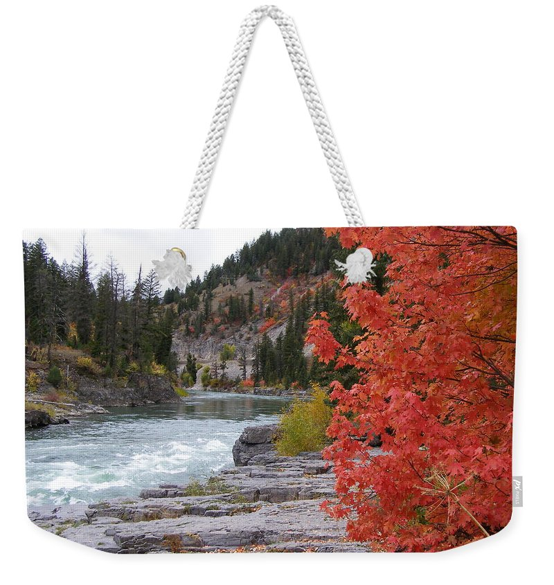 River Weekender Tote Bag featuring the photograph Color On The Snake by DeeLon Merritt