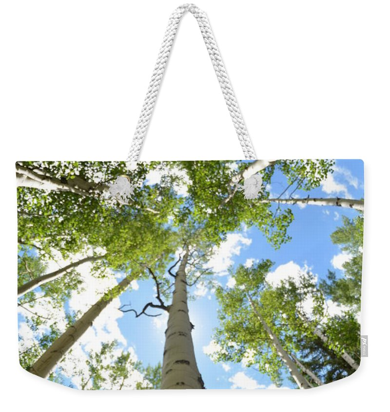 Photograph Weekender Tote Bag featuring the photograph Colorado Colors by Victoria Bryant