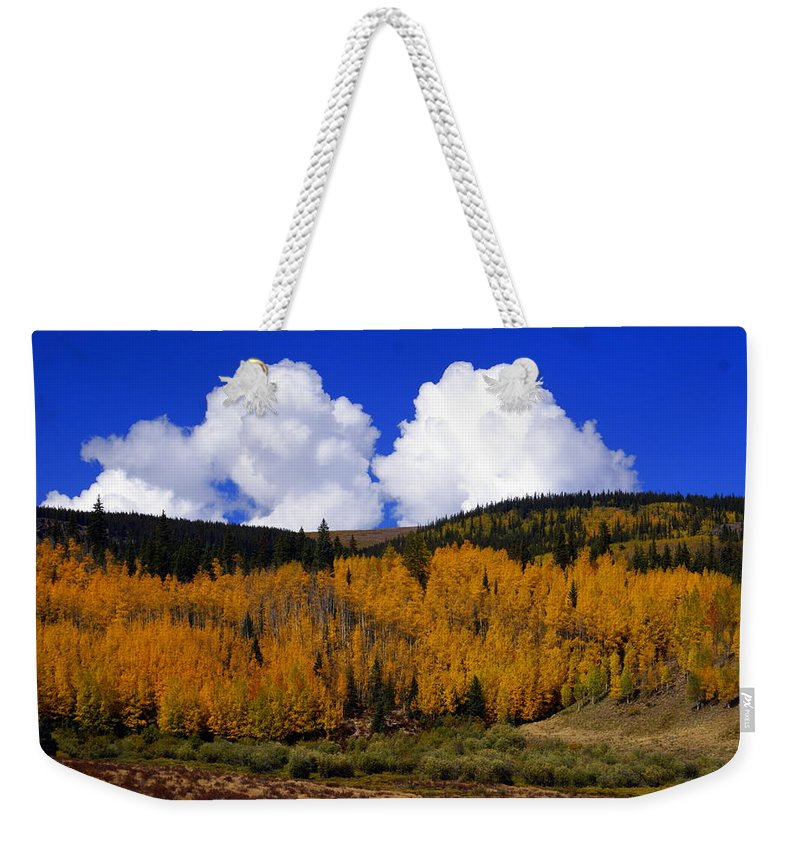 Fall Colors Weekender Tote Bag featuring the photograph Colorado Fall 2 by Marty Koch
