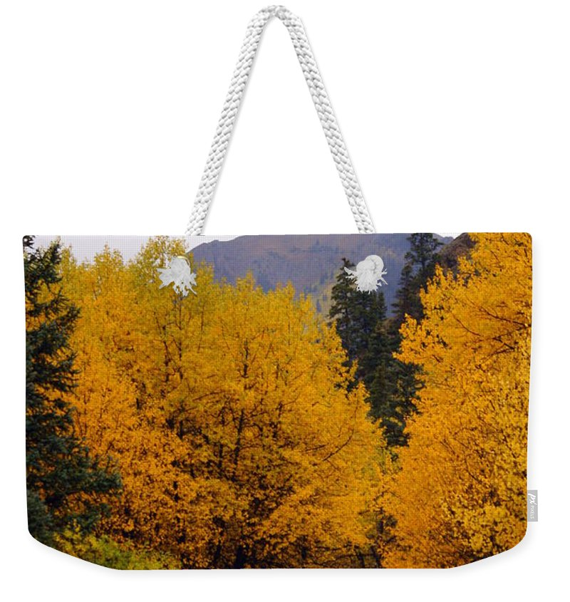 Fall Colors Weekender Tote Bag featuring the photograph Colorado Road by Marty Koch