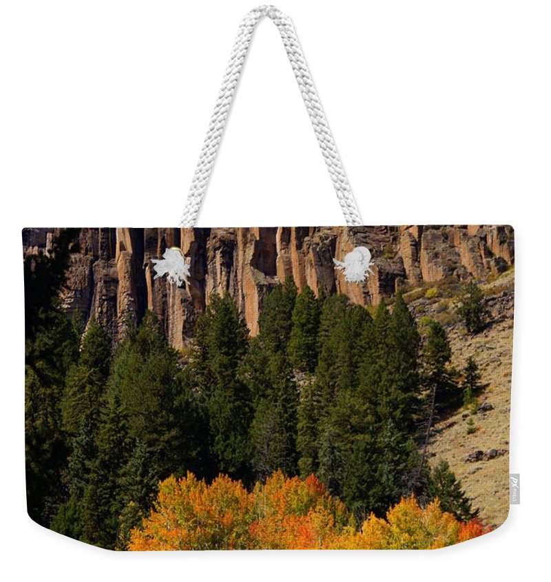 Fall Colors Weekender Tote Bag featuring the photograph Colorful Canyon by Marty Koch