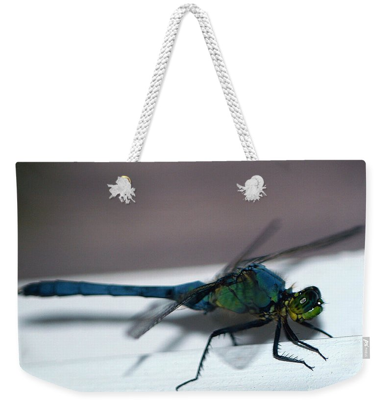 Clay Weekender Tote Bag featuring the photograph Colorful Dragon by Clayton Bruster