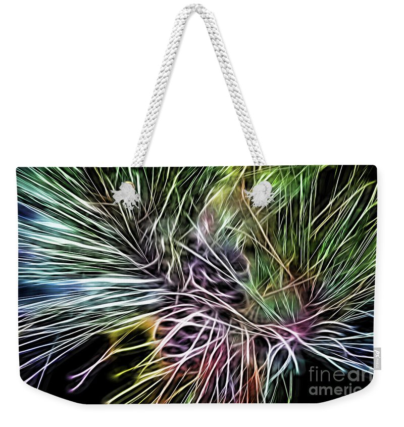 Colorful Weekender Tote Bag featuring the photograph Colorful Lines by Carolyn Truchon