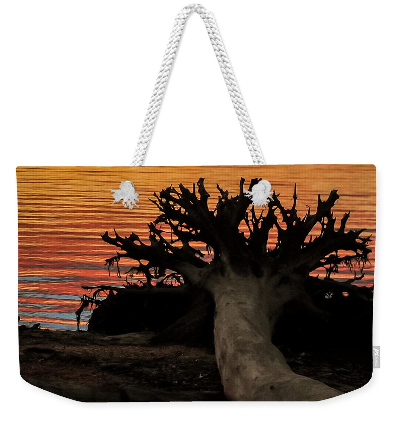Terry D Photography Weekender Tote Bag featuring the photograph Colorful Roots by Terry DeLuco