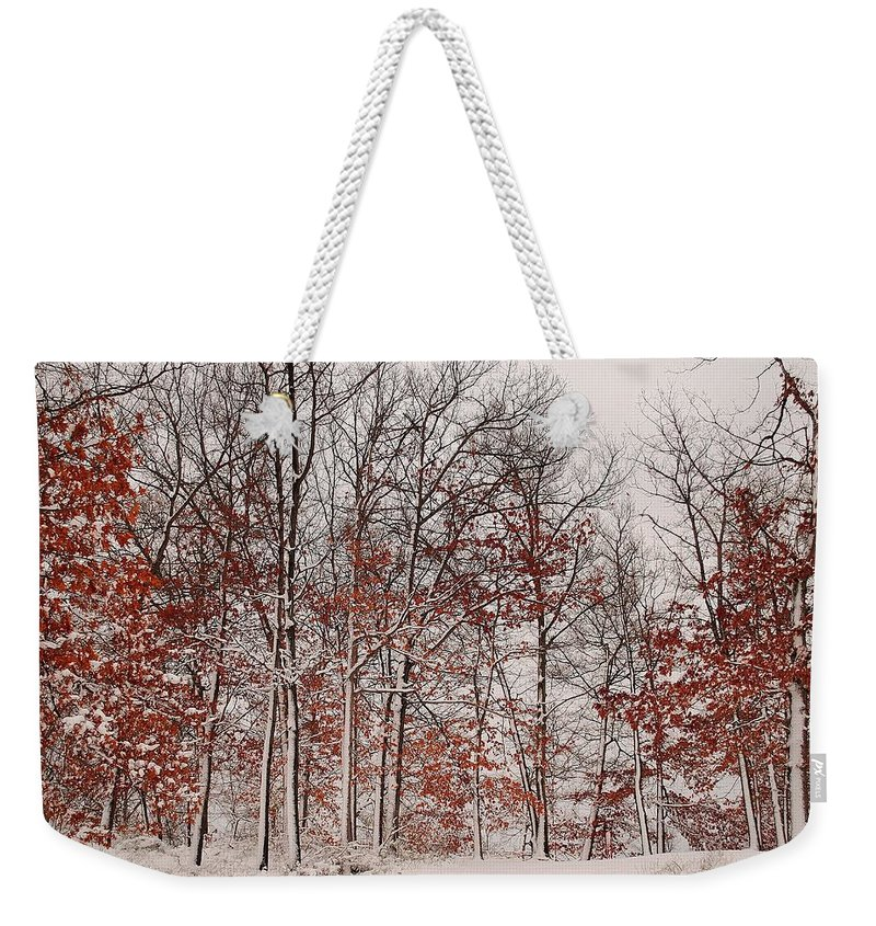 Winter Weekender Tote Bag featuring the photograph Colorful Winters Day by Frozen in Time Fine Art Photography