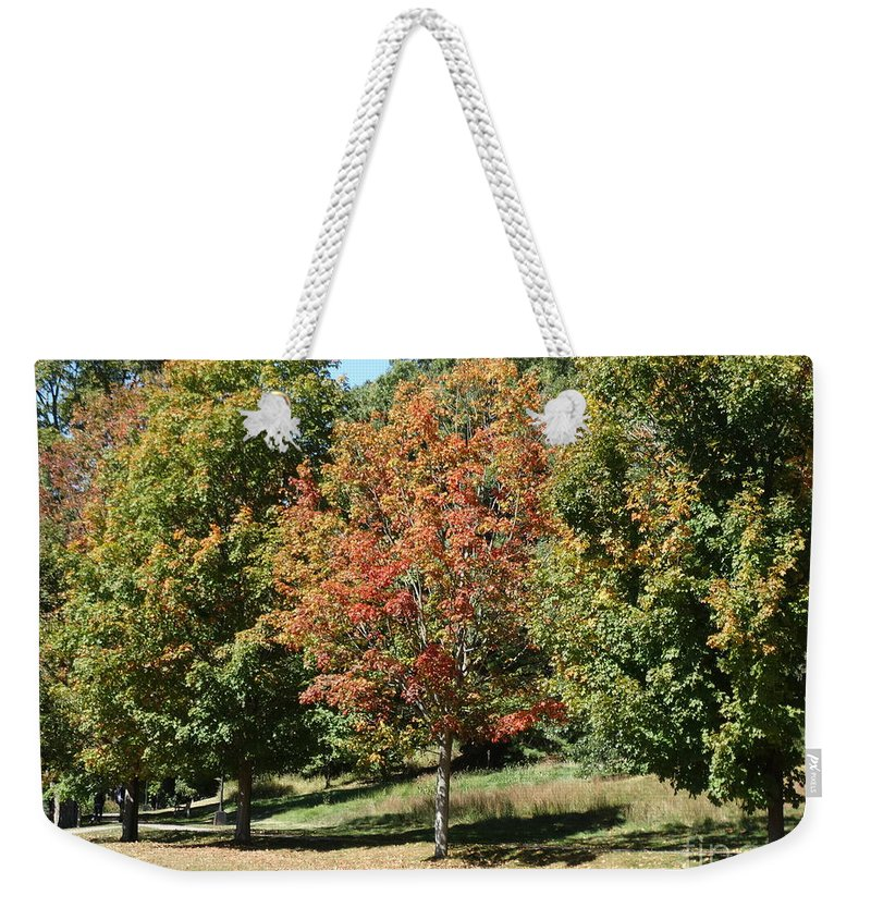 Fall Foliage Weekender Tote Bag featuring the photograph Colors Of Autumn by Gina Sullivan