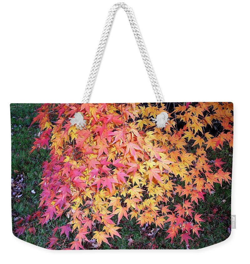 Fall Leaves Weekender Tote Bag featuring the photograph Colors Of Fall by Karin Dawn Kelshall- Best