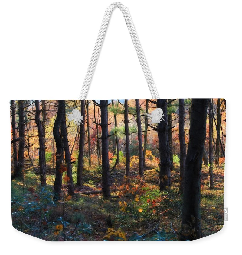 Forest Weekender Tote Bag featuring the photograph Colors Of The Forest by Lori Deiter