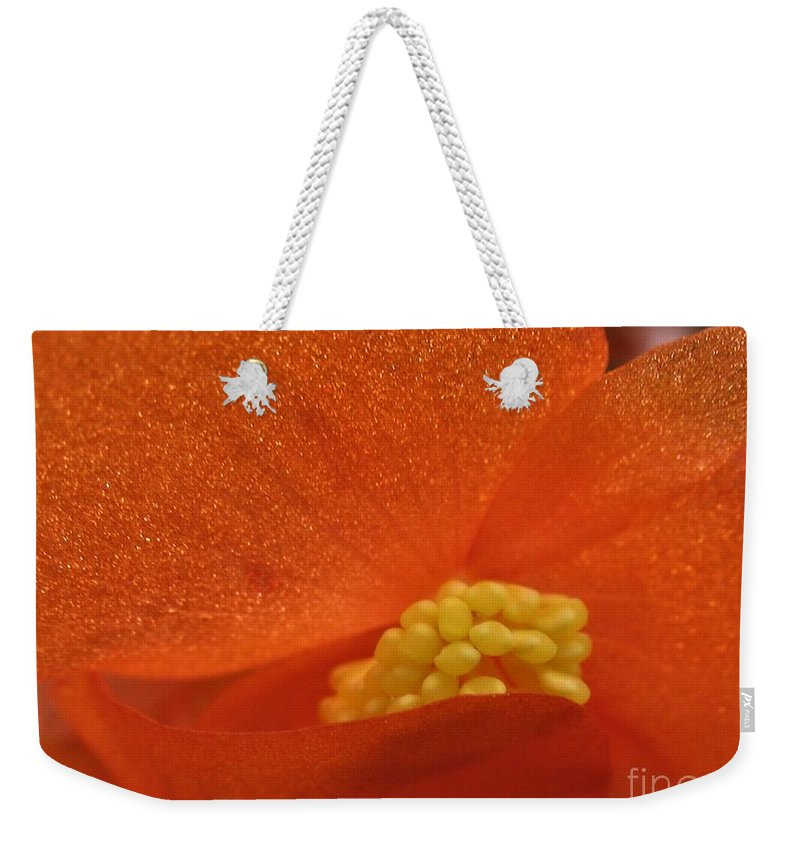Colors Of The Sun Weekender Tote Bag featuring the photograph Colors Of The Sun by Patti Whitten