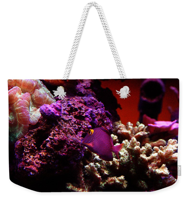 All Rights Reserved Weekender Tote Bag featuring the photograph Colors of Underwater Life by Clayton Bruster