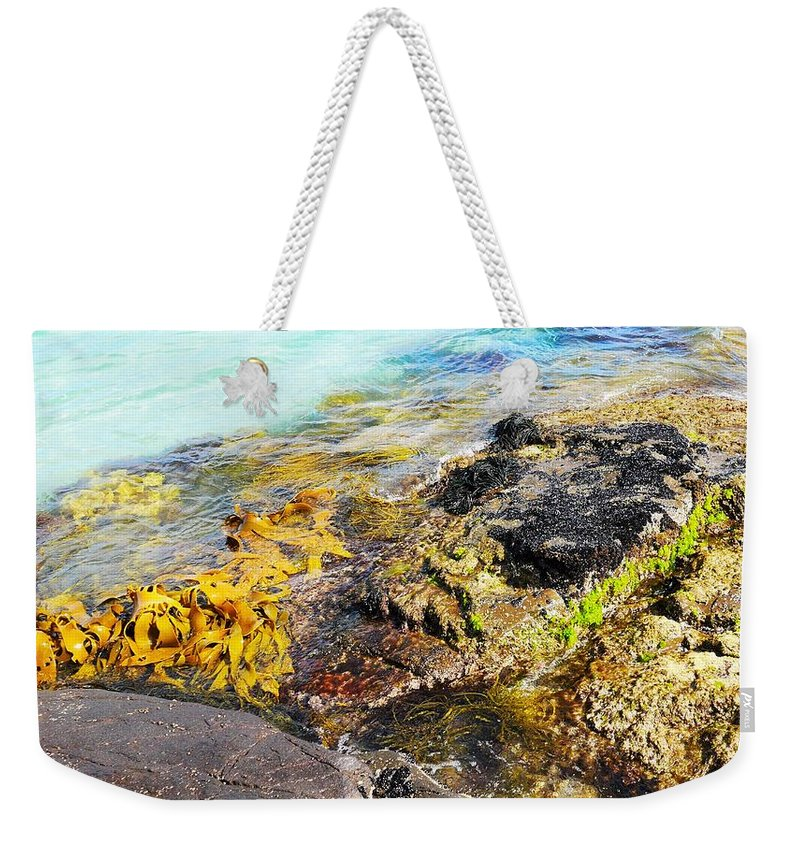 Rock Weekender Tote Bag featuring the photograph Colourful Sea Life - Fishers Point by Lexa Harpell