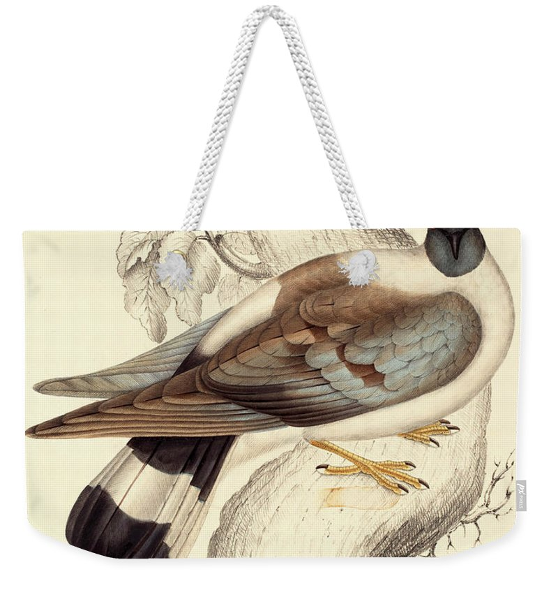 Pigeon Weekender Tote Bags