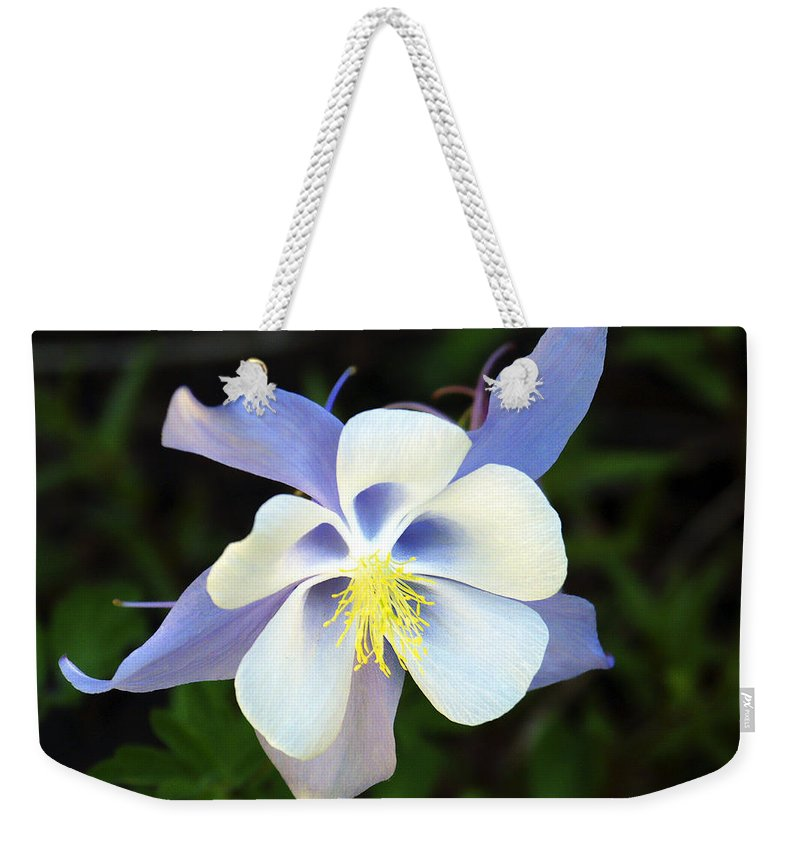 Columbine Weekender Tote Bag featuring the photograph Columbine Colorado State Flower by Marilyn Hunt