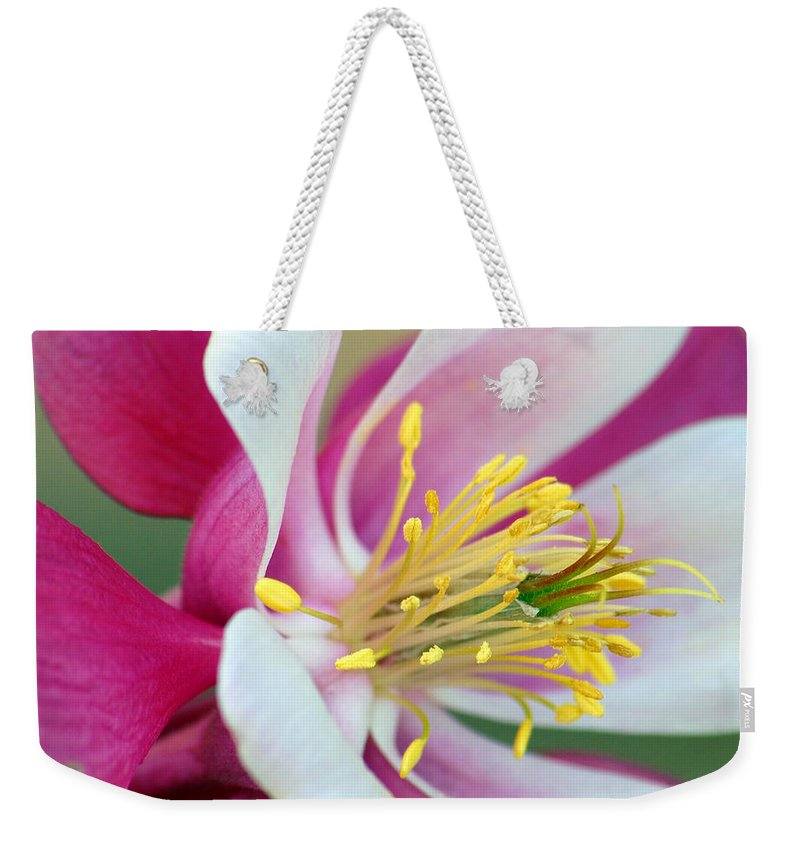Columbine Weekender Tote Bag featuring the photograph Columbine Flower 2 by Amy Fose