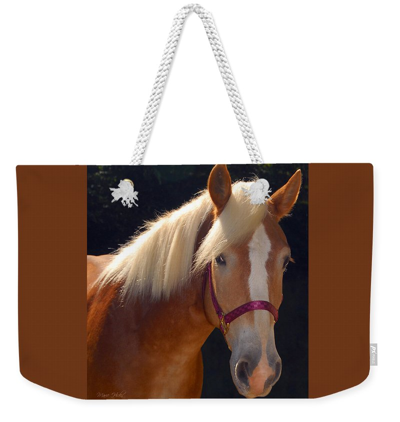 Haflinger Weekender Tote Bag featuring the photograph Come Play With Me by Marie Hicks