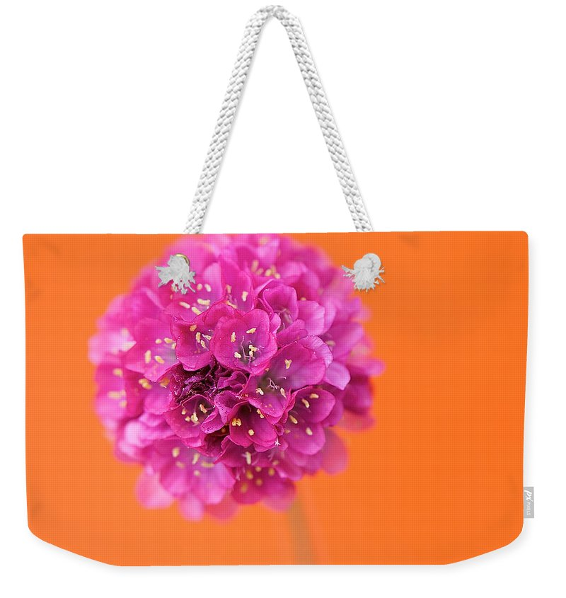Orange Weekender Tote Bag featuring the photograph Comic Book Colour by Lisa Knechtel
