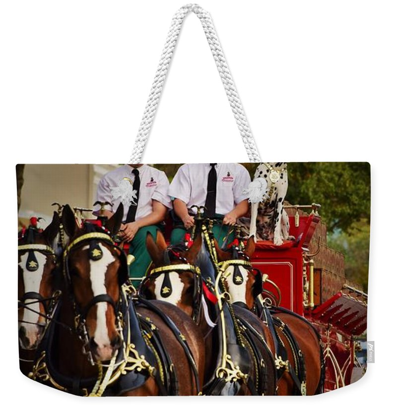 Whoa Weekender Tote Bag featuring the photograph Coming Home by Lisa Renee Ludlum