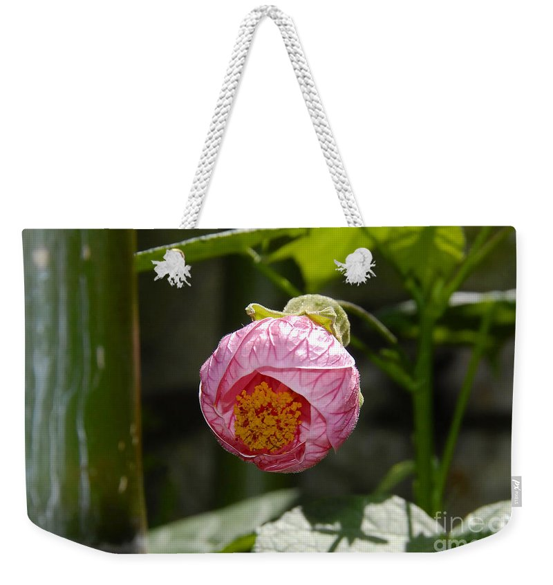 Flower Weekender Tote Bag featuring the photograph Coming Out by David Lee Thompson