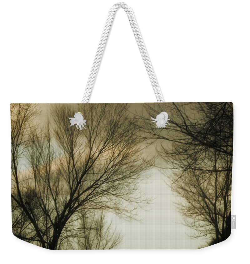 Rural Weekender Tote Bag featuring the photograph Coming Up The Drive 2 by Marilyn Hunt