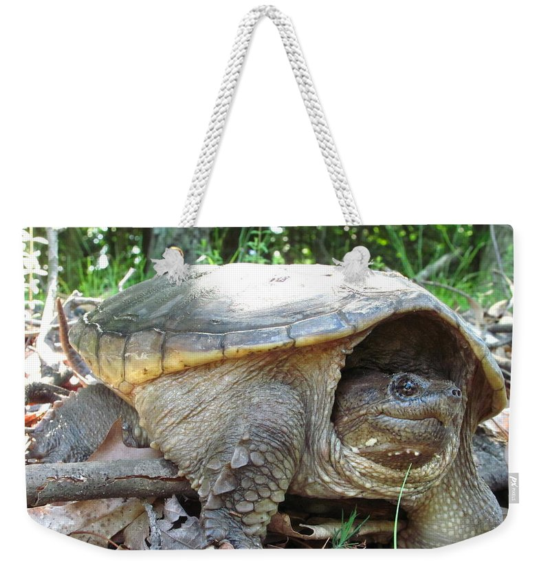 Common Snapping Turtle Images Common Snapping Turtle Photograph Prints Reptile Images Reptile Photograph Prints Nature Swamp Creature Wetland Ecosystem Biodiversity Freshwater Turtle Images Freshwater Predator Weekender Tote Bag featuring the photograph Common Snapping Turtle by Joshua Bales