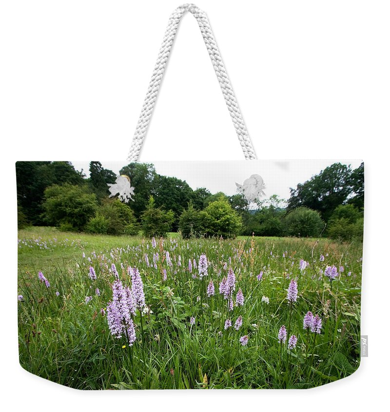 Orchid Weekender Tote Bag featuring the photograph Common Spotted Orchids by Bob Kemp
