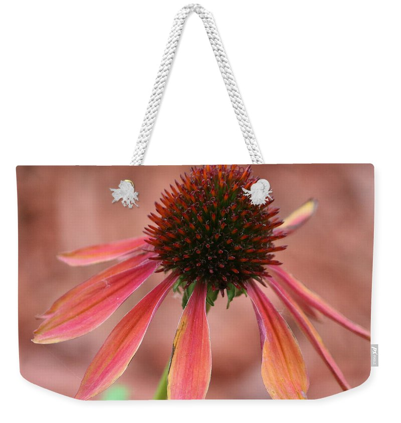 Coneflower Weekender Tote Bag featuring the photograph Coneflower by Lori Tordsen