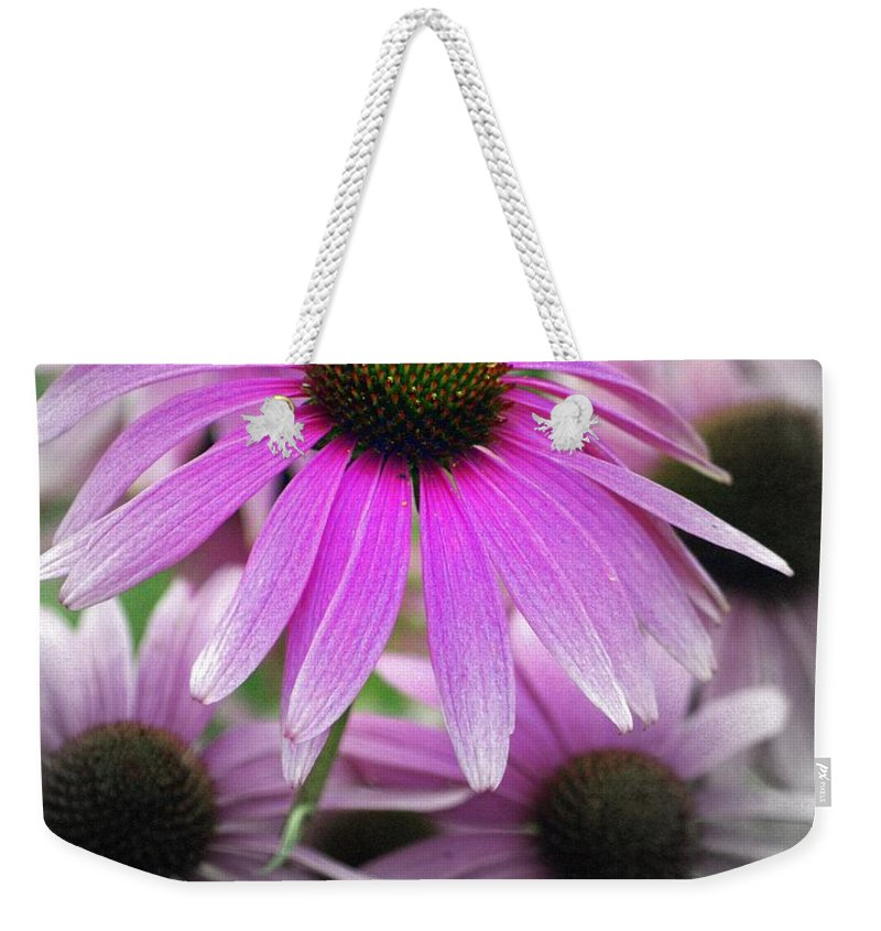 Flowers Weekender Tote Bag featuring the photograph Coneflowers by Marty Koch