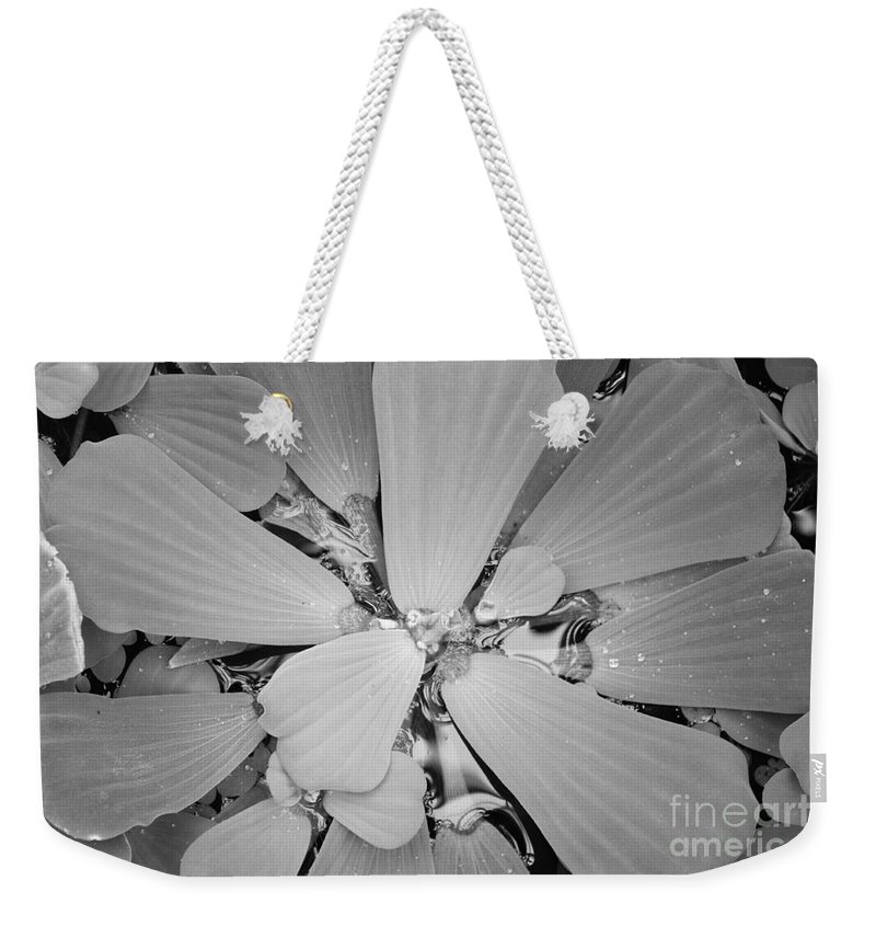 Nature Weekender Tote Bag featuring the photograph Conservatory Nature In Black And White 1 by Carol Groenen