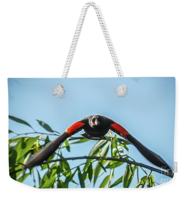 Red Winged Weekender Tote Bag featuring the photograph Contact Sports by Yvette Wilson