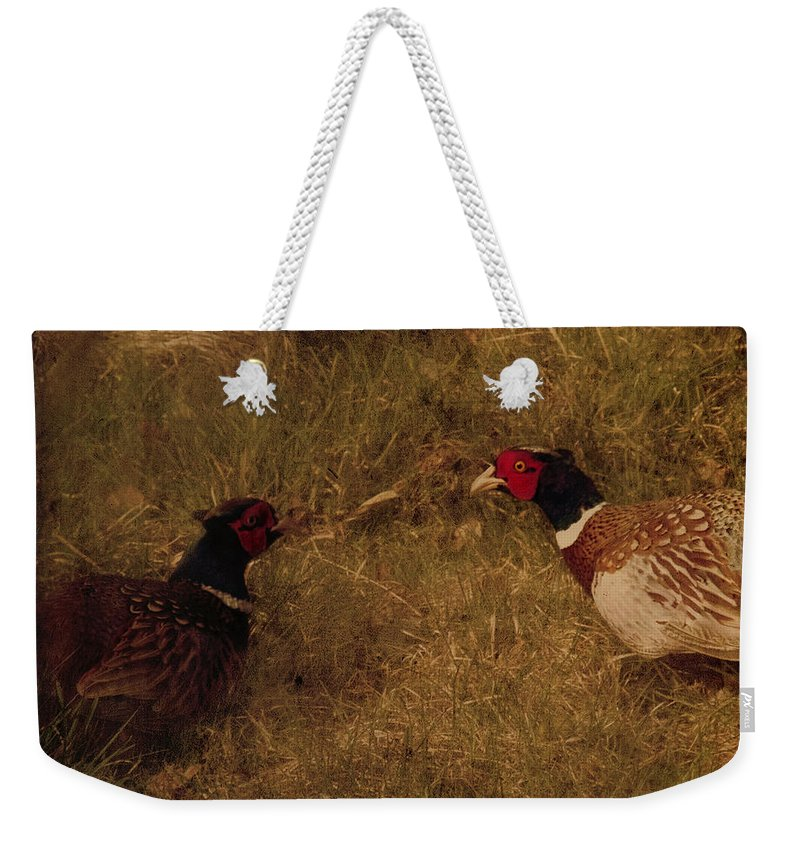 Pheasant Weekender Tote Bag featuring the photograph Conversations by Angel Tarantella